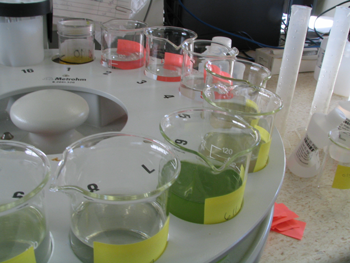 A circular array of numbered beakers containing green liquid.